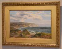 Fine Oil Painting of the White Cliffs of Dover (2 of 7)