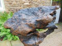 Impressive Antique Walnut Burr on Cumbrian Stone (4 of 5)