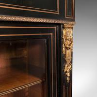 Tall Antique Vitrine Cabinet, English, Display Case, Bookcase - Regency (8 of 12)