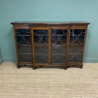 Edwardian Walnut Break Fronted Antique Bookcase (5 of 7)