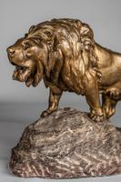 Stunning Large French Bronze Sculpture of Roaring Lion - Signed Le Courtier (9 of 10)