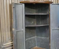 Antique Burr Walnut Corner Cupboard (8 of 9)