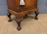 Queen Anne Style Burr Walnut Bedside Cupboard (8 of 10)