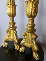 Handsome Pair of 18th Century Giltwood Alter Sticks (3 of 4)