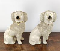 Two Decorative 19th Century Staffordshire Poodles (9 of 9)