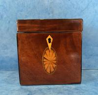 18th Century Harewood Inlaid Single Mahogany Tea Caddy (4 of 18)