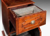 Pair of Late 18th Century Mahogany Cupboards (3 of 6)