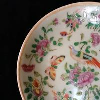 Chinese Porcelain Fencai, Celadon Plate, Qing Dynasty Tongzhi Period (5 of 8)