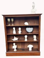 Victorian Mahogany Open Bookcase (4 of 5)