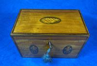 George III Satinwood Twin Tea Caddy with Prince of Wales Inlay (4 of 15)