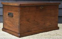 Lovely 19th Century Elm Box / Chest / Blanket Box c.1830 (10 of 13)