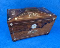 William IV Rosewood Twin Section Tea Caddy with Inlay (3 of 11)