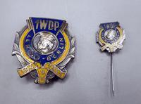 WW2 Polish 1st Tadeusz Kosciuszko Infantry Division - Breast Badge & Stick Pin (3 of 5)