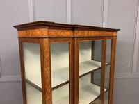 Edwardian Inlaid Mahogany & Satinwood Display Cabinet (9 of 12)