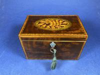 18th Century Mahogany Twin Tea Caddy with Shell Inlay (10 of 17)