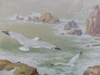 Watercolour Seagull seascape List Artist Noel Hubert Hopking (5 of 10)