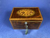 18th Century Mahogany Twin Tea Caddy with Shell Inlay (17 of 17)