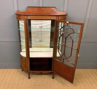 Inlaid Mahogany Display Cabinet by Jas Shoolbred (5 of 14)