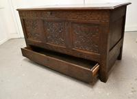 Large Carved Oak Mule Chest, Marriage Chest (9 of 10)