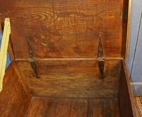 19th Century Country Elm Trunk (6 of 13)