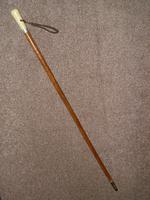 Antique Malacca Walking Stick/Cane With Bovine Bone Teardrop Handle & Silver Collar (8 of 11)
