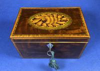 18th Century Mahogany Twin Tea Caddy with Shell Inlay (16 of 17)