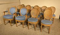 Set Of 12 Chairs And Two Armchairs Louis XVI 18th Century (7 of 11)