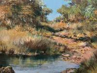 Francois Badenhorst S.A - South African Bush Landscape Oil Painting (8 of 12)