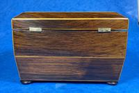 Regency Rosewood Twin Section Tea Caddy (5 of 12)