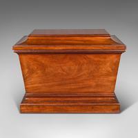 Large Antique Sarcophagus Cellarette, English, Mahogany, Wine Cooler, Regency (6 of 12)