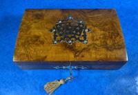 Victorian Brass Bound Burr Walnut  Card Box (2 of 11)