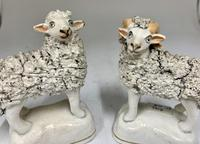 Antique Pair of Staffordshire Pottery Sheep c.1830 (6 of 7)