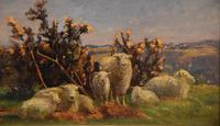 """Oil Painting pair by William Sidney Cooper """"Sheep in a Coastal Landscape"""" (4 of 6)"""