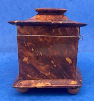 Victorian Tortoiseshell Tea Caddy with Mother of Pearl Inlay (14 of 20)