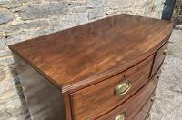 Large Regency Mahogany Bow Front Chest of Drawers (7 of 19)