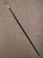 Antique Bovine Horn Handled Ebony Walking Stick With Gold Plate Collar (2 of 11)
