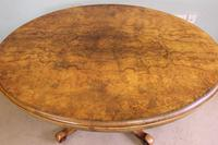 Antique Victorian Burr Walnut Oval Loo Dining Table. (7 of 11)
