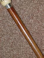 Edwardian 1904 Hallmarked Silver Oak Wood Walking Cane W/Teardrop Handle 'Valet' (5 of 14)