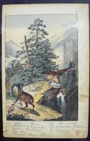 6 Framed Animal Coloured Pictures Plates C1877 Sketches From Nature - N Europe & Lapland (7 of 11)