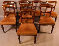 Set of 8 William IV Dining Chairs  Mahogany (12 of 12)