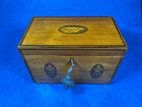 George III Satinwood Twin Tea Caddy with Prince of Wales Inlay (14 of 15)