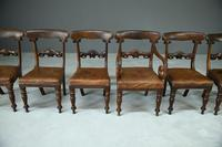 6 William IV Walnut Dining Chairs (5 of 9)