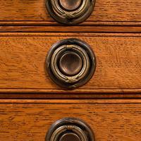 Antique Collector's Specimen Case, English, Oak, Chest, Jewellery Box, Edwardian (10 of 12)