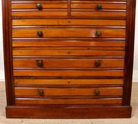 Walnut Chest of Drawers 19th Century (4 of 12)