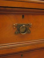Antique Narrow Office Chest of Drawers (17 of 17)