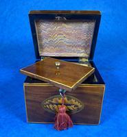 18th Century Mahogany  Shell Inlaid Tea Caddy (4 of 18)