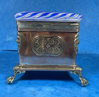 Arts & Crafts Glass and Brass Single Tea Caddy. (14 of 18)