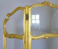 French Gilt Rococo Three Fold Glazed Screen (9 of 11)