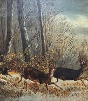 'Chasing The Deer' Beautiful 19th Century Game Hunting Moonlit Landscape Oil Painting (6 of 14)