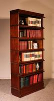 Fine Globe Wernicke Bookcase in Mahogany of 6 Elements - 19th Century (7 of 8)